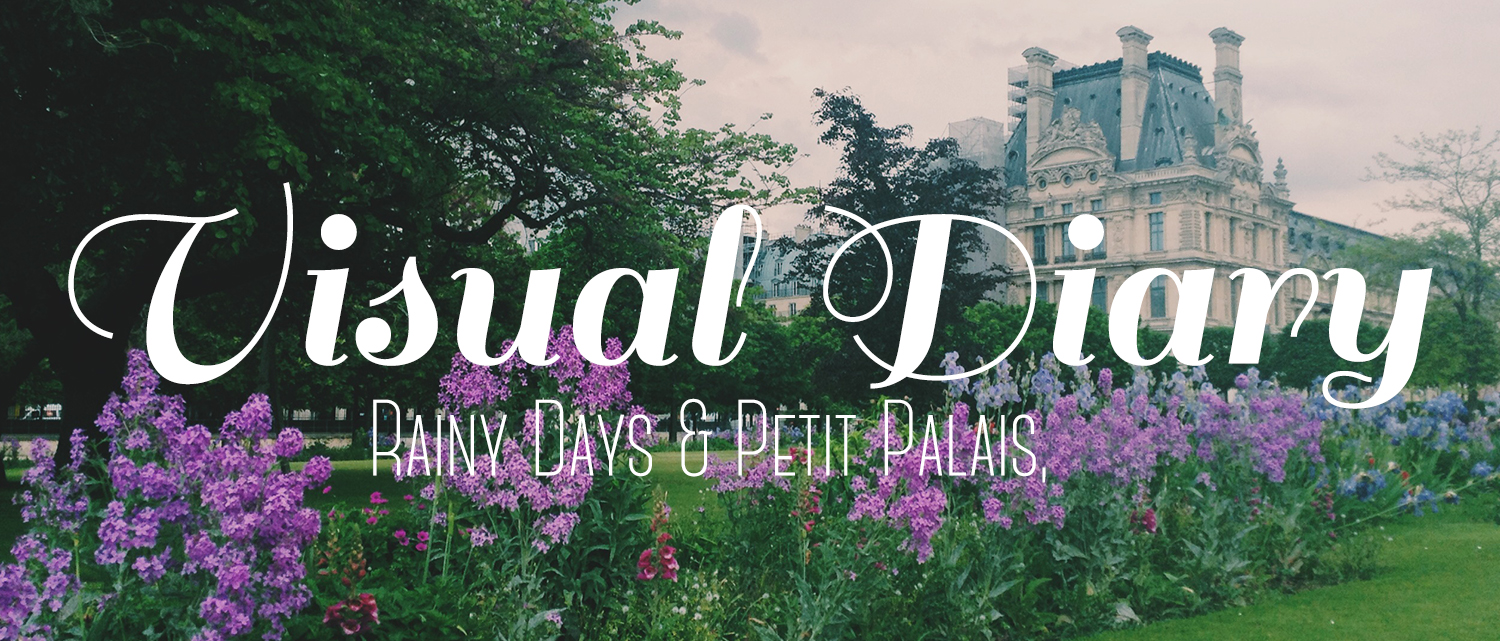 Visual Diary: Rainy Days, Petit Palais, and other Life Things