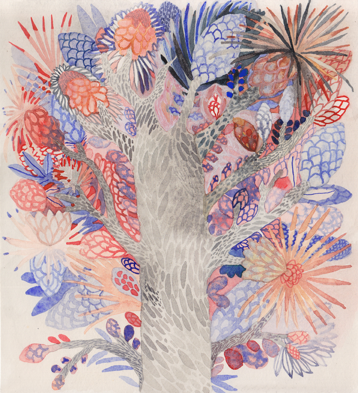 Blooming Joshua Trees Michelle Morin