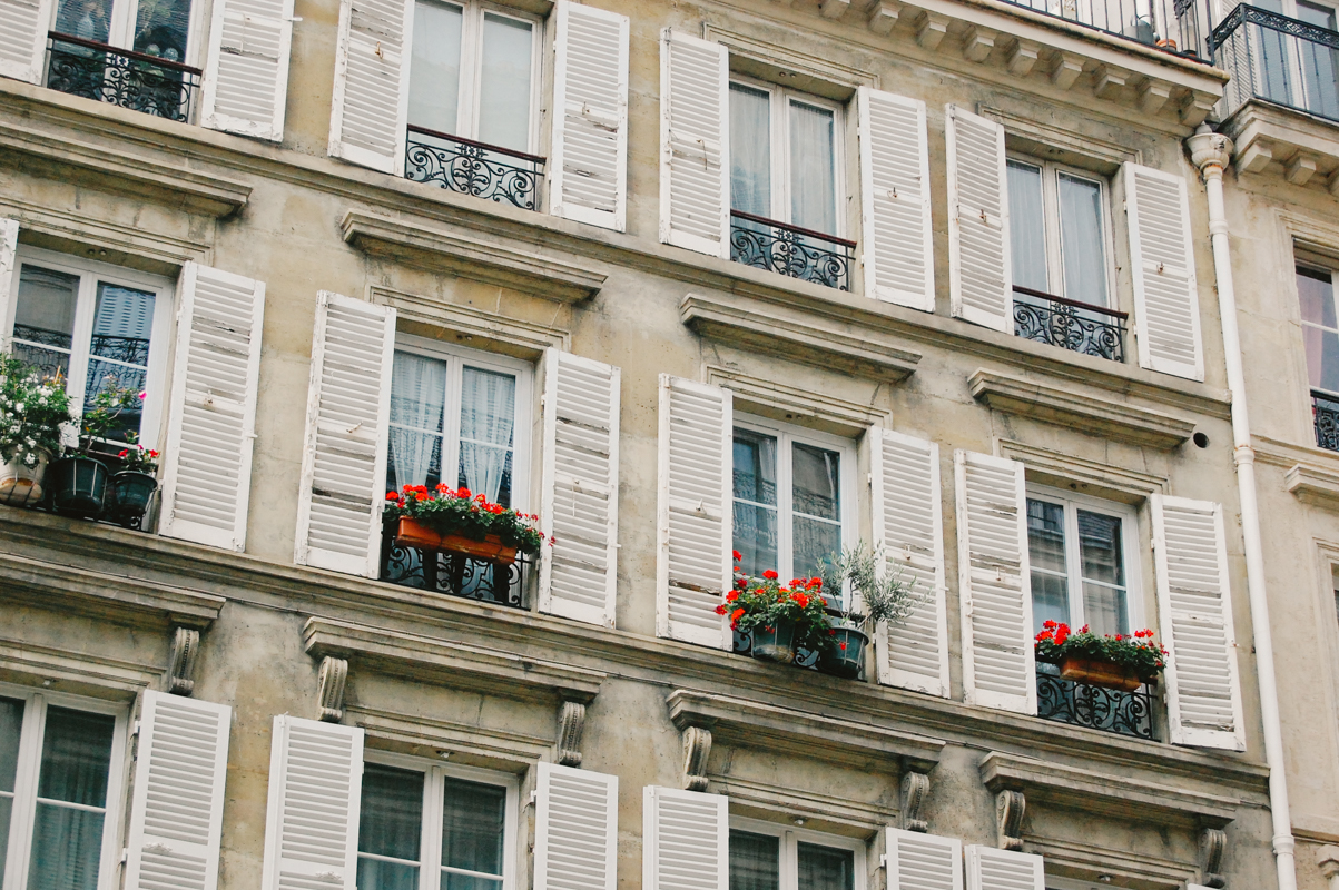 Parisian Windows with Flowers