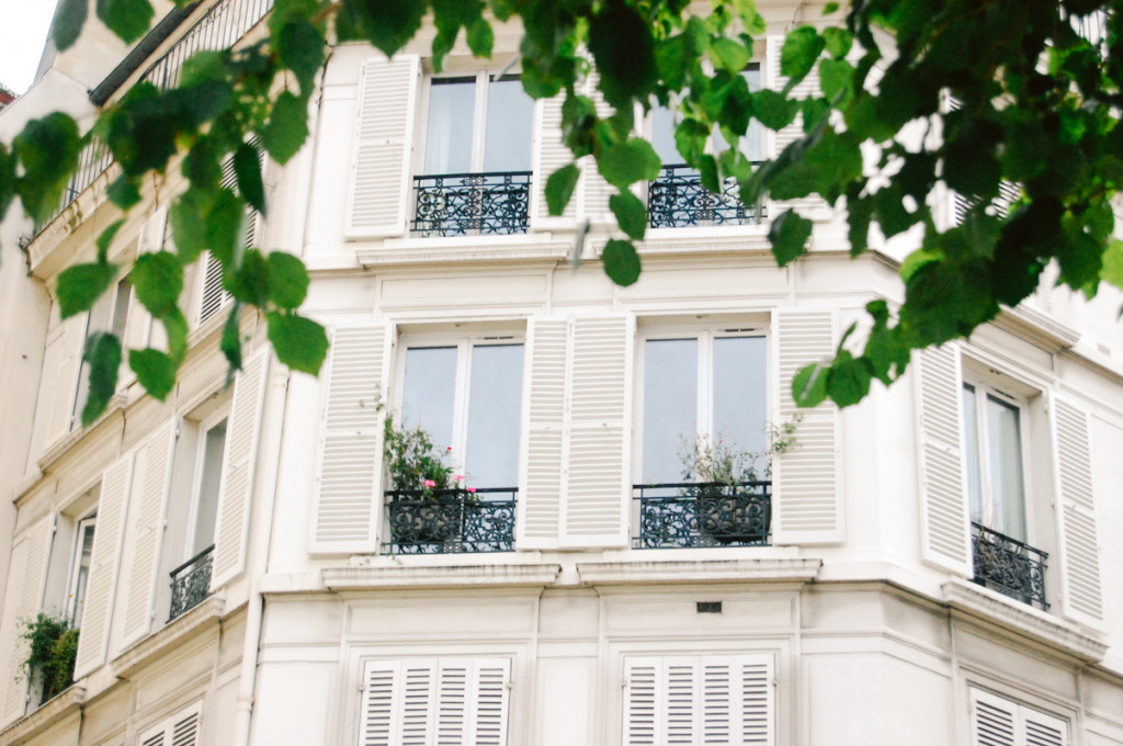 Parisian Windows with Leaves