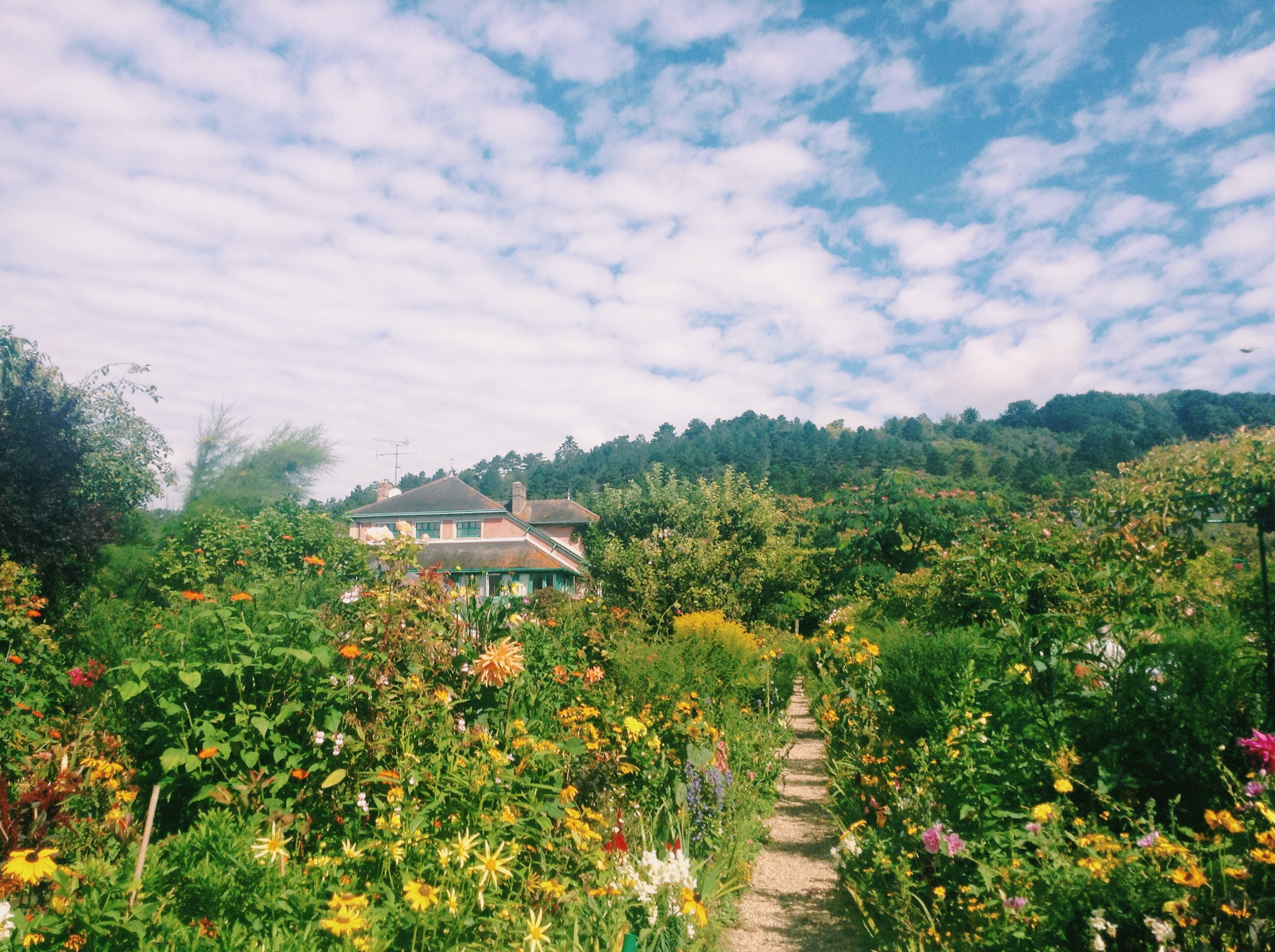 Late Summer at Giverny