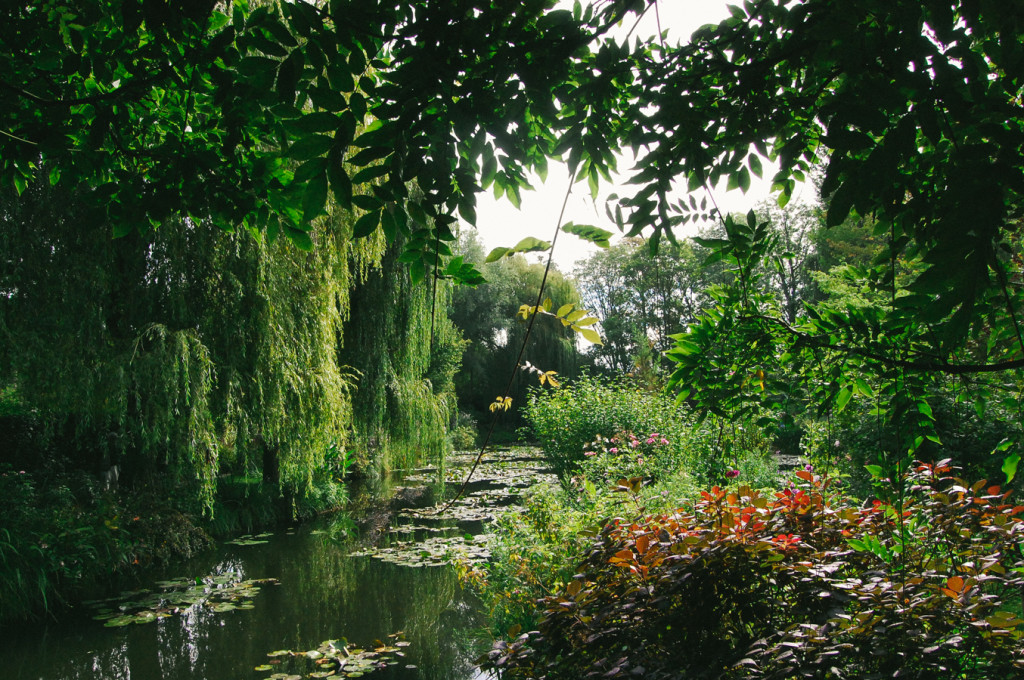 Late Summer at Giverny lily pond