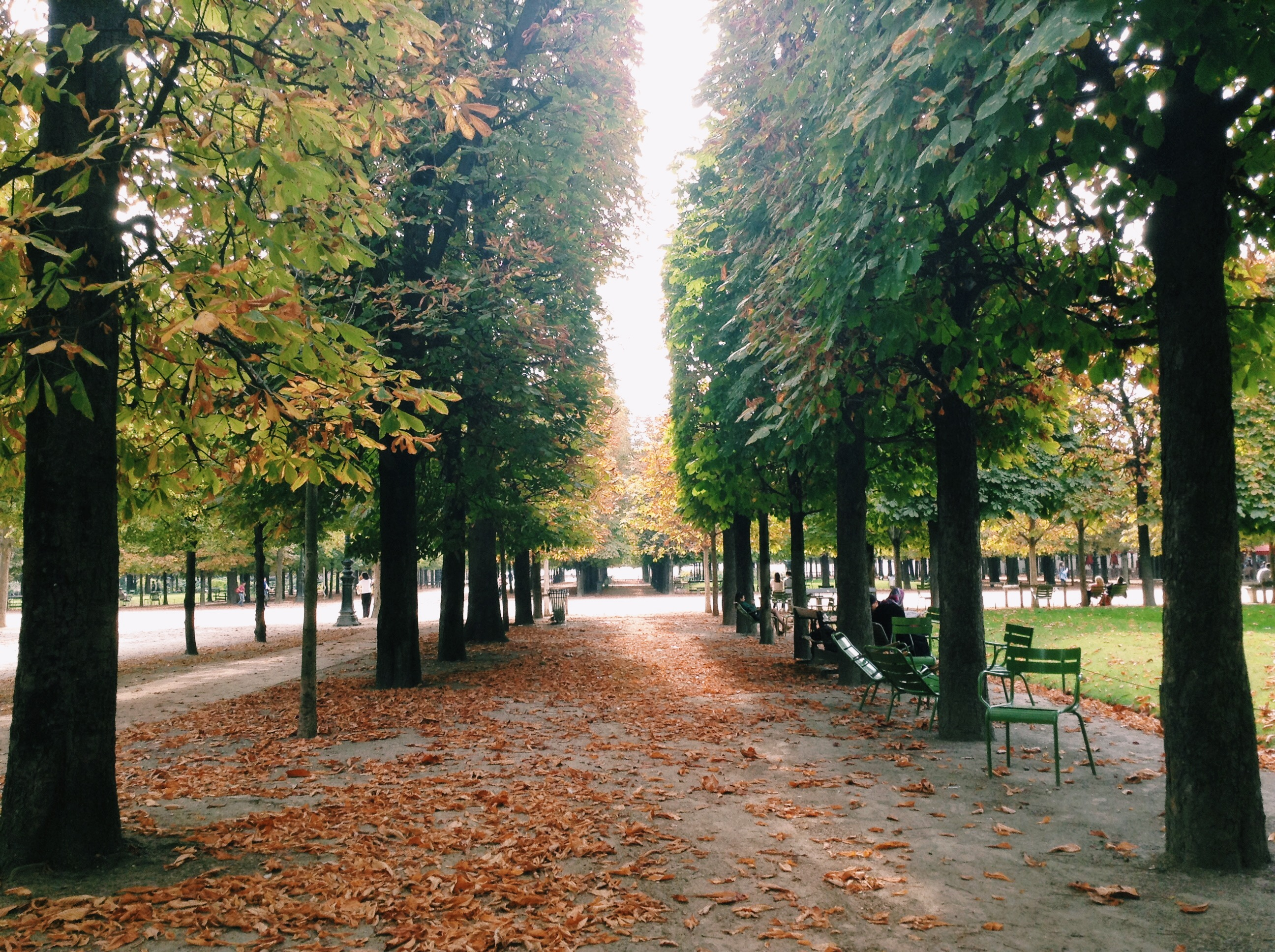 In the Tuileries garden