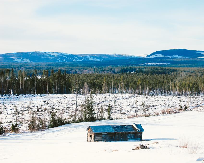 Sweden-blog-12