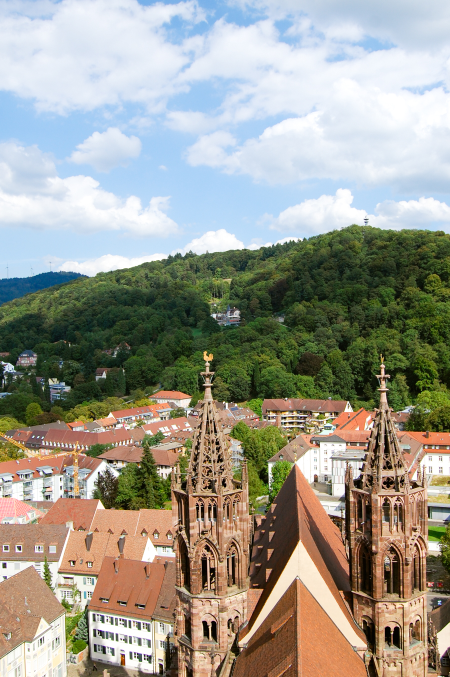 View from Freiburg church