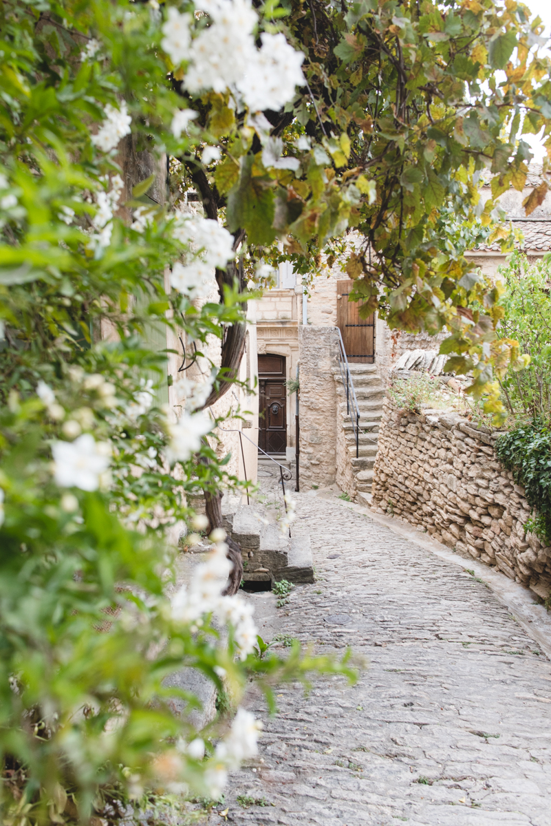 40 Minutes in Gordes Travel Diary | French Californian