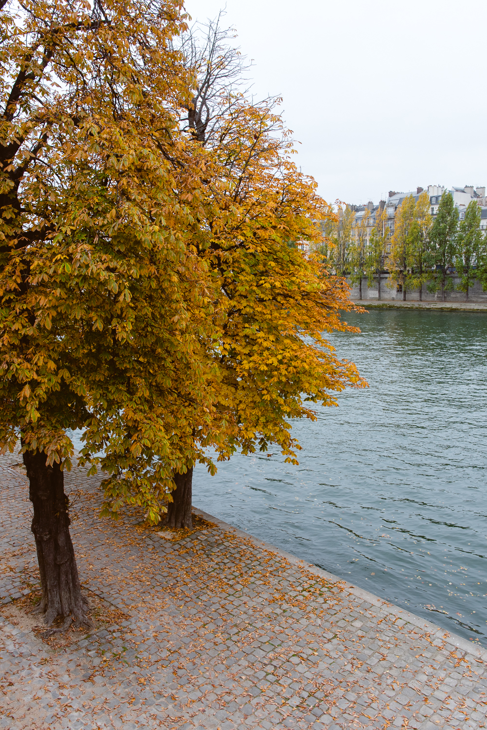 hannah-wilson-autumn-paris-2