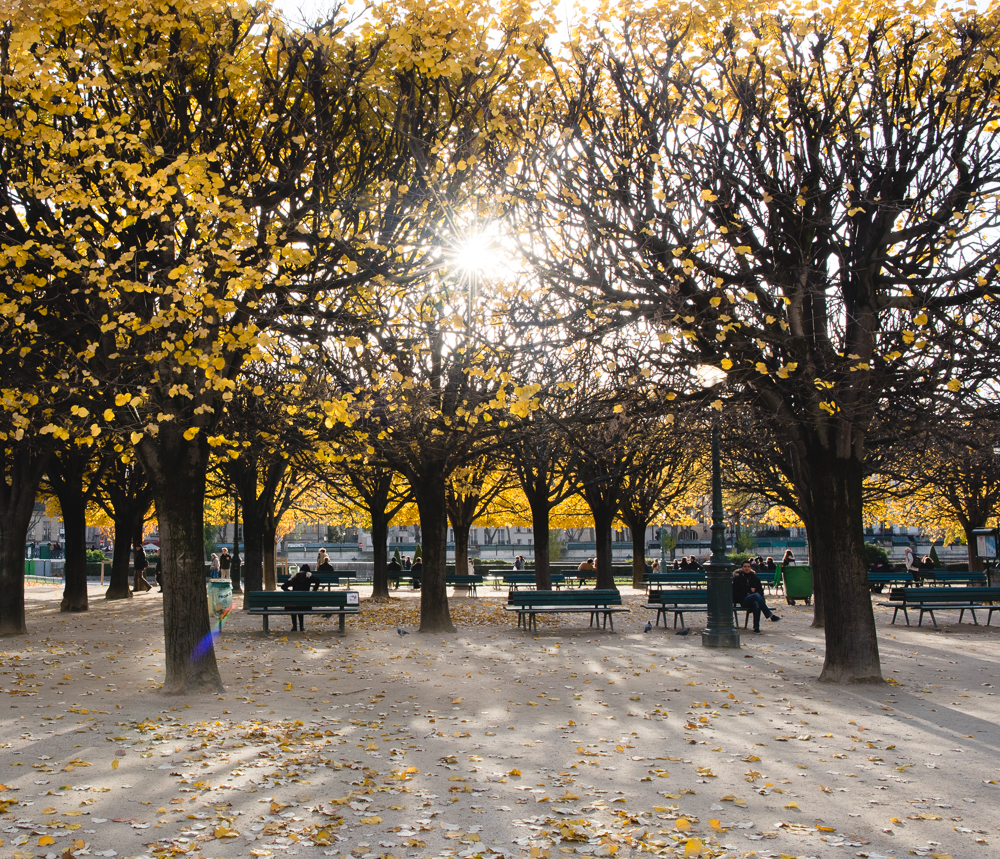 hannah-wilson-autumn-paris-wide-10