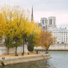 hannah-wilson-autumn-paris-wide-3