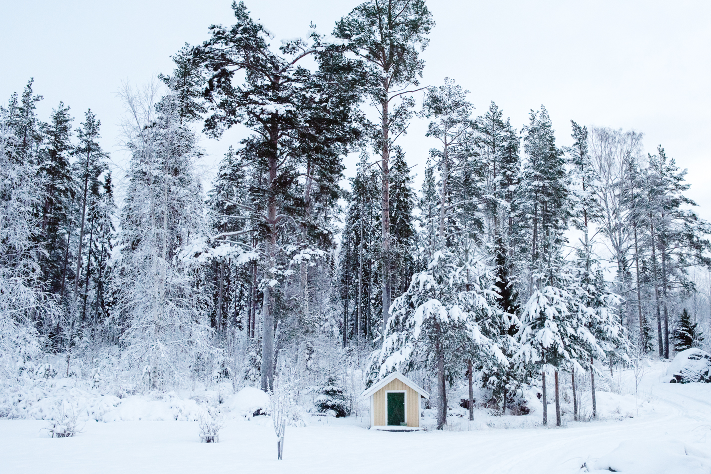 sweden-snow-blog-hannah-wilson-1