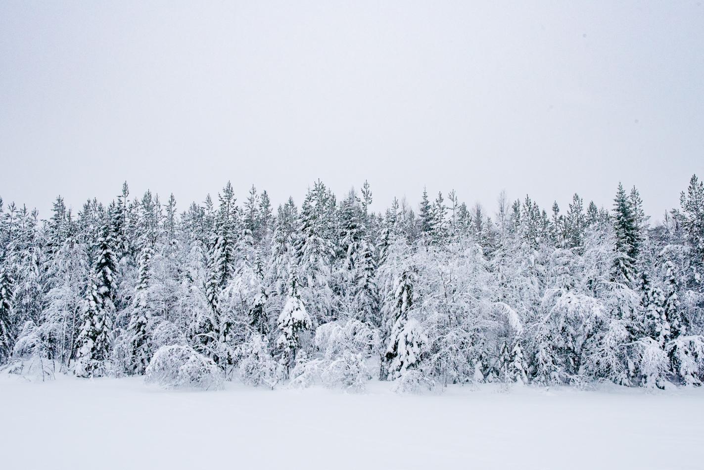 sweden-snow-blog-hannah-wilson-18